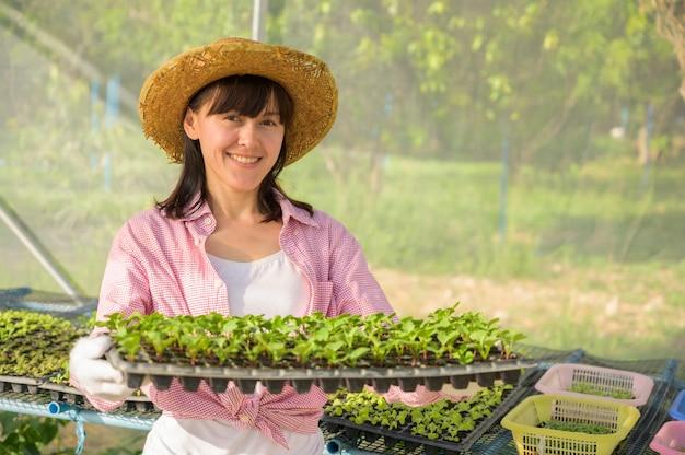 Mujer joven que sostiene una granja hidropónica de las verduras orgánicas de la pequeña planta verde.