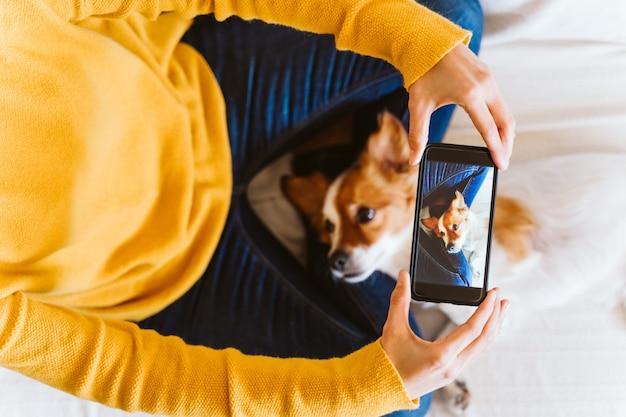 Mujer joven que toma una imagen del pequeño perro lindo de jack russell en casa. quedarse en casa concepto