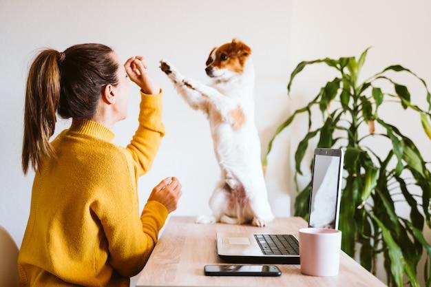 Mujer joven que trabaja en la computadora portátil en casa, con máscara protectora, lindo perro pequeño además. trabaja desde casa, mantente seguro durante el coronavirus covid-2019 concpt