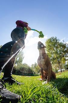 Mujer jugando con perro en el parque
