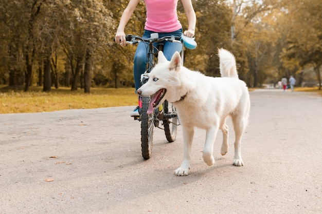 Mujer montando bicicleta con un perro husky blanco