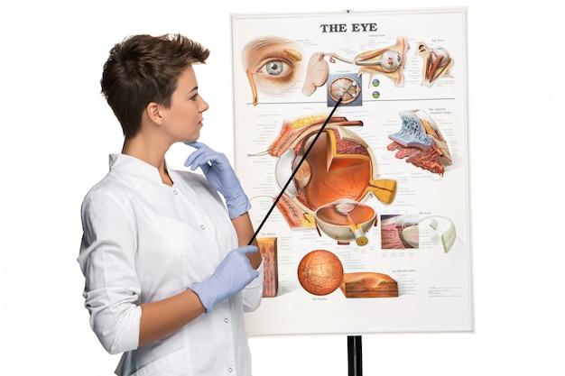 Mujer óptica u oculista que habla sobre la estructura del ojo