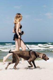 Mujer paseando a su perro weimaraner en la playa.