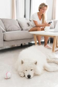 Mujer y perro hermoso y encantador