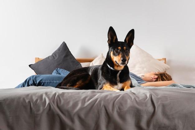 Mujer y perro de tiro completo en la cama