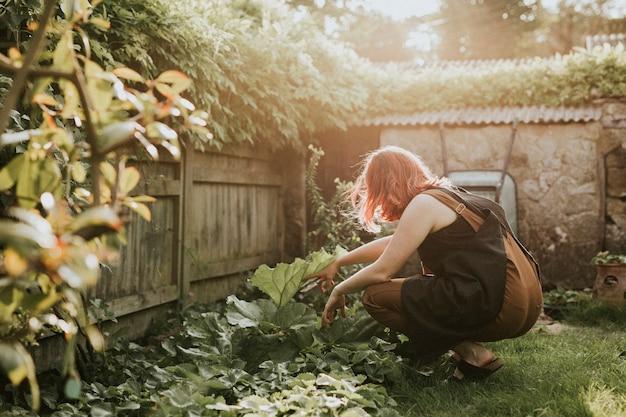Mujer plantar hortalizas en el pequeño jardín de su casa