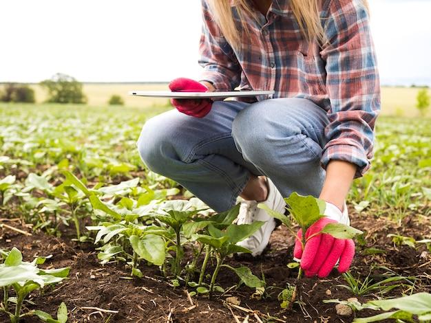 Mujer poniendo un plan en el suelo