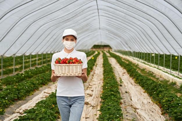 Mujer posando en la plantación de fresas con canasta en manos