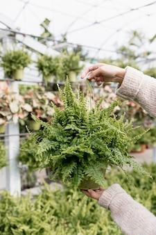 Mujer de primer plano con planta verde