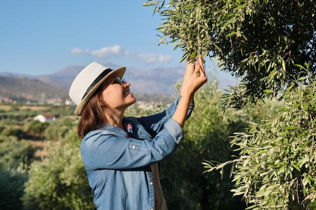 Mujer que trabaja en el jardín de olivos, fondo de montaña