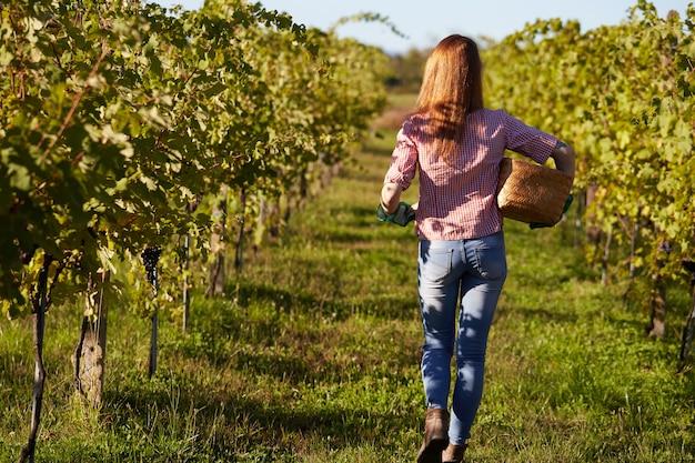 Mujer que trabaja en un viñedo