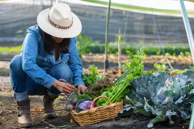 Mujer recogiendo verduras