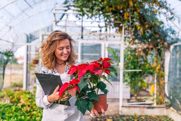 Mujer sonriente de la florista que sostiene la maceta con una flor roja en el greenhous brillante colorido
