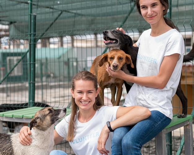Mujer sonriente pasar tiempo con lindos perros de rescate en el refugio