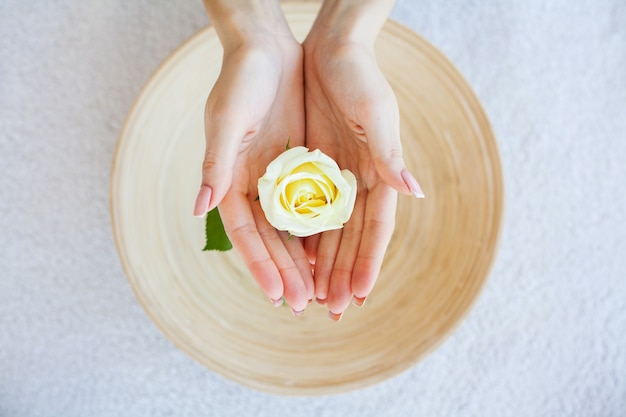 Mujer sostenga hermosa flor en sus manos