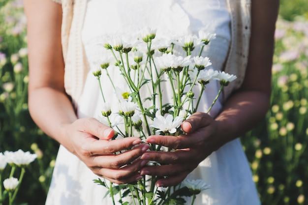 La mujer sostenía muchas flores de crisantemo blancas en el jardín de flores.