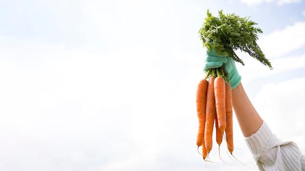 Mujer sosteniendo algunas zanahorias con espacio de copia
