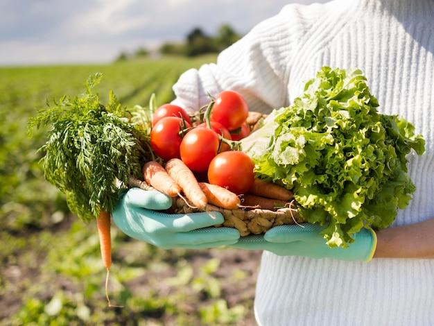 Mujer sosteniendo una canasta llena de diferentes verduras