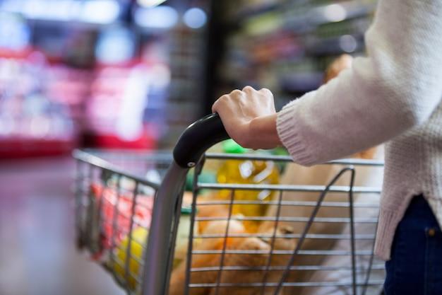 Mujer sosteniendo comestibles en carrito de compras