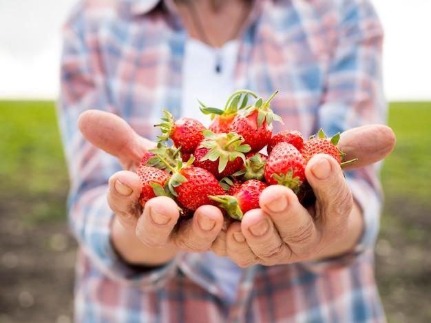 Mujer sosteniendo un montón de fresas