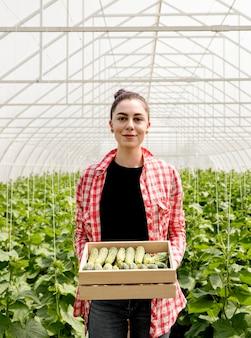 Mujer sosteniendo pepinos en invernadero
