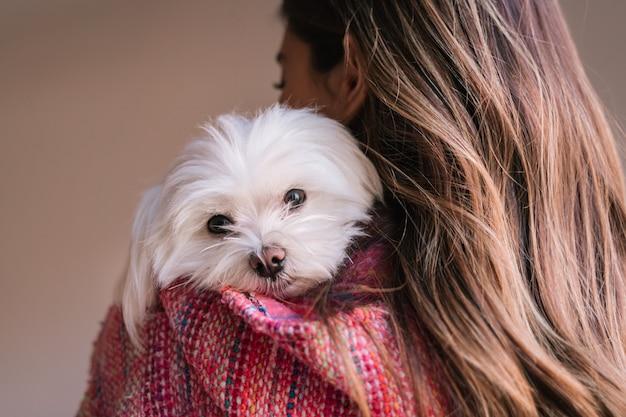 Mujer sosteniendo su perro maltés en el hombro en casa