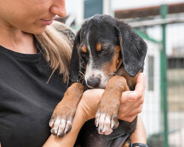 Mujer sosteniendo triste perro de rescate en el refugio