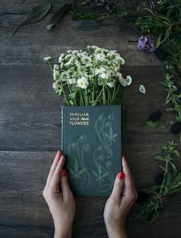La mujer sostiene el libro familiar wild and flowers en margaritas comunes en el panel marrón