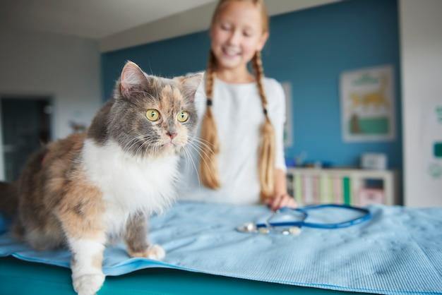 Mujer y su gato en el veterinario
