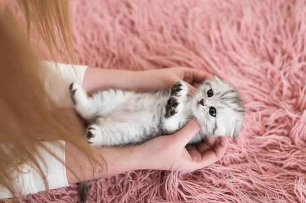 La mujer tiene divertido gatito gris en sus brazos
