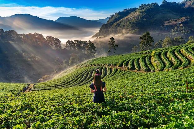 Mujer vistiendo vestido de tribu de las colinas en el jardín de fresas en doi ang khang, chiang mai, tailandia.