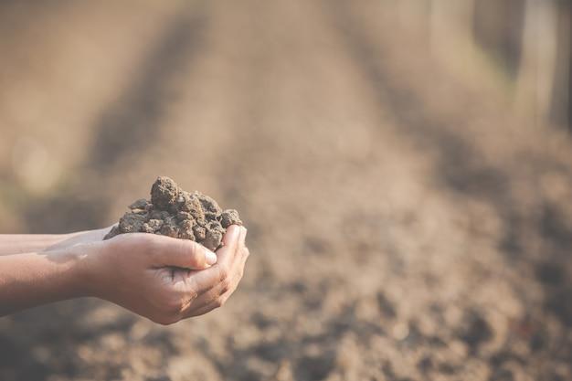 Las mujeres agricultoras están investigando el suelo.