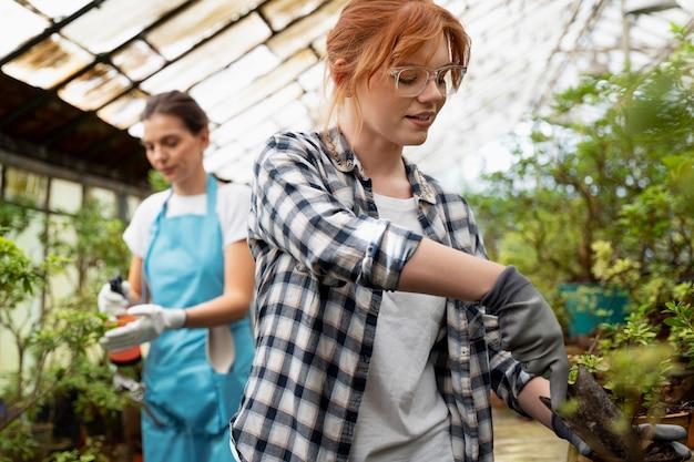 Mujeres cuidando sus plantas en invernadero.