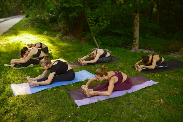 Mujeres delgadas haciendo ejercicios de estiramiento en colchonetas, entrenamiento de yoga en grupo sobre la hierba en el parque. meditación, clase de entrenamiento al aire libre, práctica de relajación.