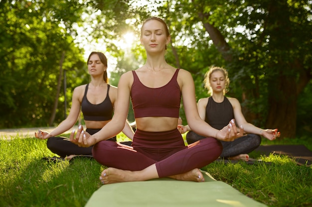 Las mujeres pacíficas se relajan, entrenamiento de yoga en grupo sobre la hierba en el parque. meditación, clase de entrenamiento al aire libre.