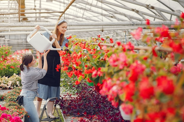 Mujeres que trabajan en un invernadero con macetas
