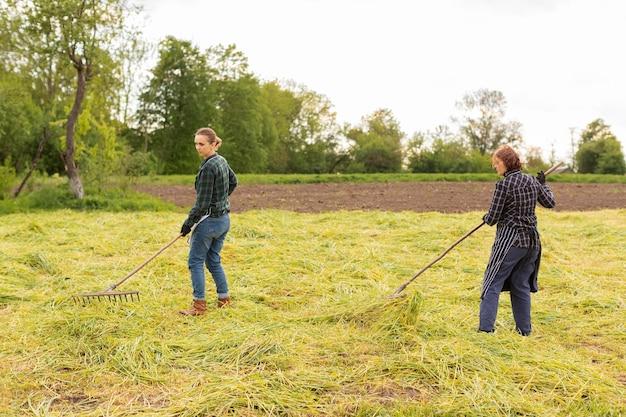 Mujeres recogiendo hierba