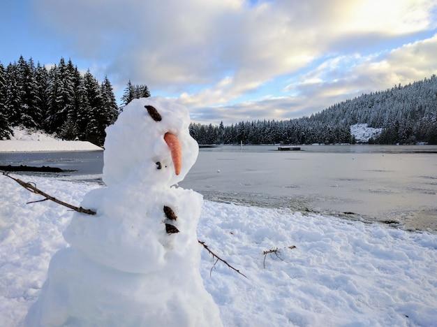 Muñeco de nieve deformado con un lago congelado