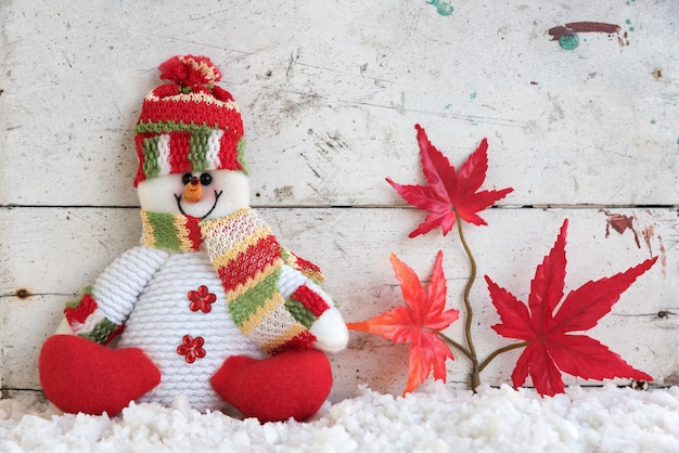 Muñeco de nieve sentado en la nieve en japón