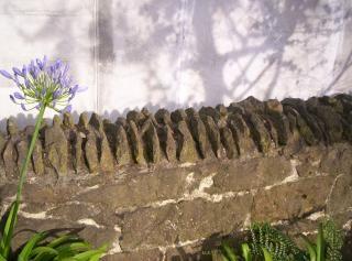 Muro de piedra: los detalles