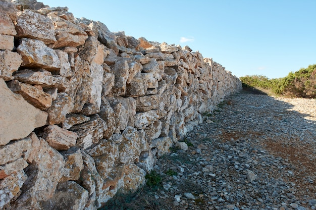 Muro de piedra típico a lo largo del camino, en el bosque mediterráneo, mallorca españa