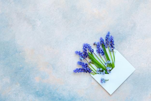 El muscari azul florece en el sobre de papel azul en el fondo del cielo azul