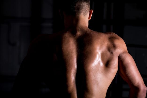 Musculoso, culturista, tipo, espalda