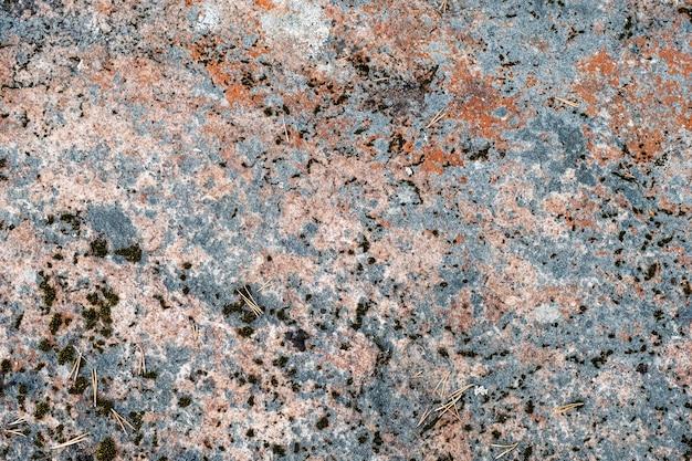 Musgo colorido en la roca. fondo natural de piedra con musgo