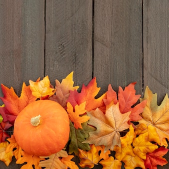 Naranja calabaza en hojas coloridas con espacio de copia