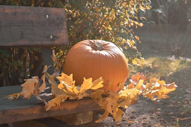 Naranja madura calabaza de halloween en el banquillo