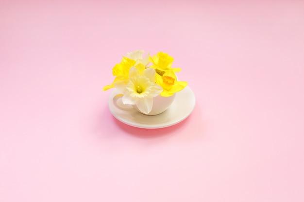 Narciso en una taza sobre un fondo rosa