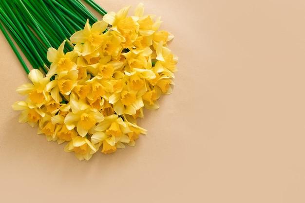 Los narcisos hermosos florecen en el fondo, visión superior con el espacio de la copia