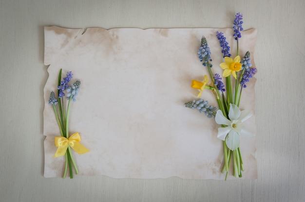 Narcisos de primavera y flores de muscari con papel