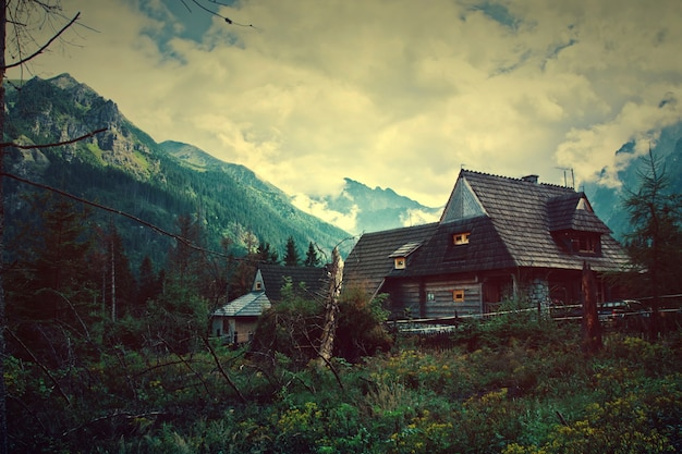 Naturaleza en las montañas.